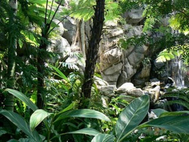 蕨キャバクラ